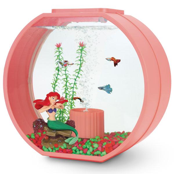оформление аквариума диснеевский стиль