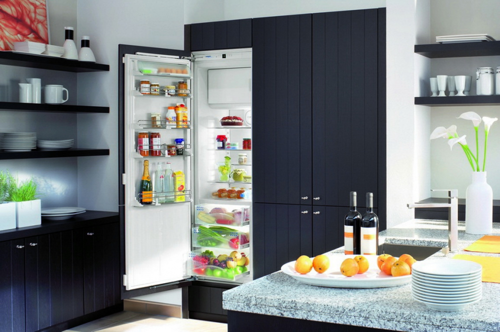 Холодильник, встроенный в шкаф