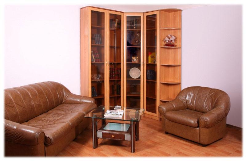книжный шкаф со стеклянными дверцами (главный ключ)