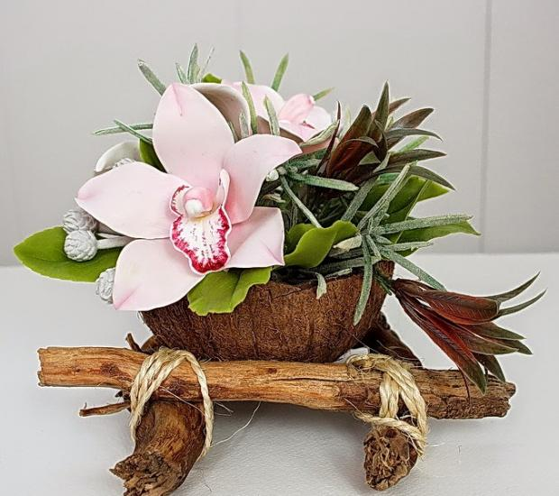 Кокосовое кашпо: экзотический продукт на вашем подоконнике | Дизайн ...