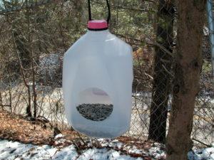 Как сделать кормушку для птиц из канистры