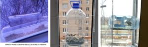 Кормушка для птиц на окно на присосках: как сделать своими руками