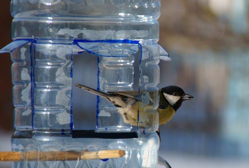 Как сделать кормушку для птиц своими руками из пластиковой бутылки