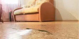 Как заделать в линолеуме дырку, порез в домашних условиях
