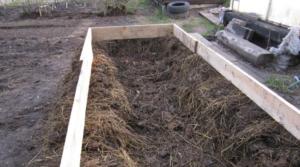 Как сделать теплую грядку для огурцов весной в открытом грунте, в теплице