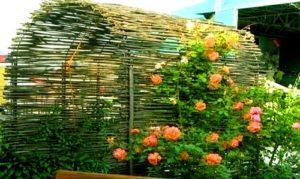 Плетень для клумбы своими руками: фото, как сплести ограждения из лозы, прутьев, досок, дерева