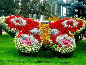Клумба в виде бабочки своими руками: фото, как сделать из металла, бордюрной ленты, покрышек