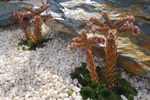Клумбы своими руками со щебнем: отсыпка гравием, цветной щебенкой и фото
