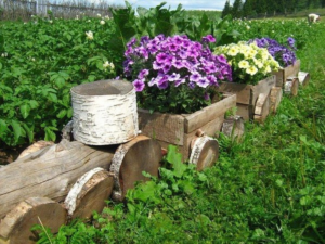 Клумбы из бревен своими руками: фото, оформление, как сделать цветник на дачном участке