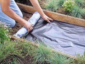 Из чего сделать дорожки между грядками в огороде: материалы и чем засыпать своими руками