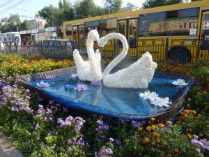 Клумба-лебедь своими руками для дачи: фото, чертежи, как сделать из шин, дерева, цемента
