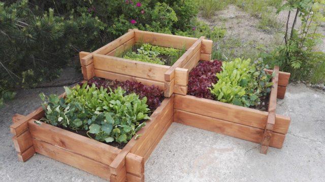 Основные виды огородных грядок и их стандартные размеры