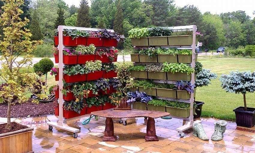 традиция сооружения сад и огород своими руками фото интересные синоптики центра