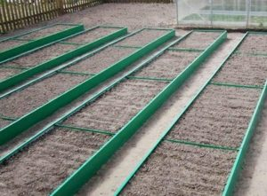 Пластиковые грядки для дачи: ограждение и короба для грядок из пластиковых панелей