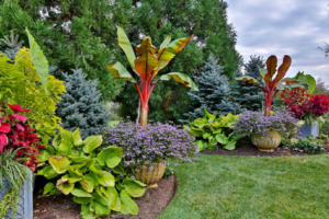 Приподнятая клумба для цветов: фото в ландшафтном дизайне, как сделать своими руками вдоль забора