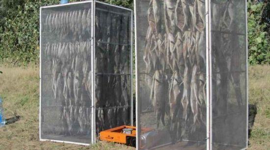 Как сделать сушилку для рыбы в домашних условиях своими руками