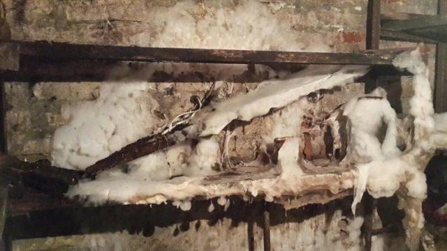 Чем обработать погреб или подвал от плесени