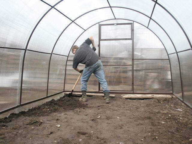 Чем и как обработать теплицу после сбора урожая осенью