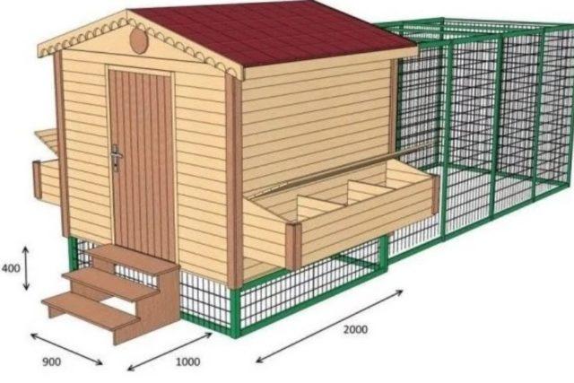 Как построить теплый зимний курятник на 20 кур