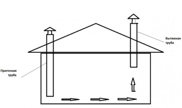 Как построить теплый зимний курятник на 50 кур