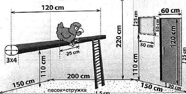 Как построить теплый зимний курятник на 10 кур