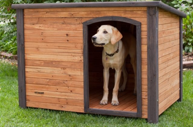 Как сделать собачью будку из подручных средств своими руками