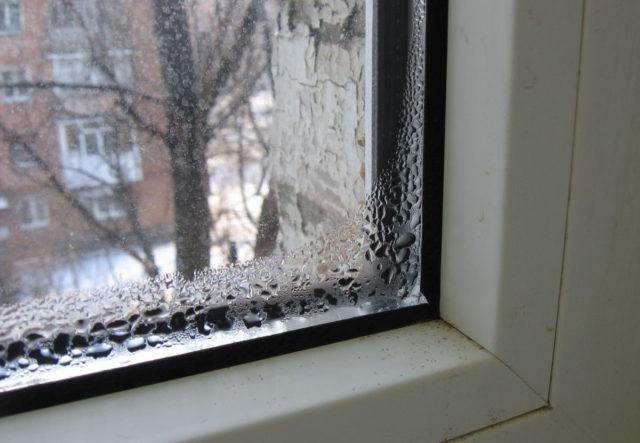 Почему образуется конденсат на окнах в квартире, дома