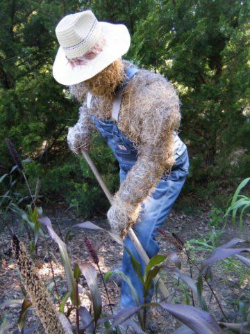 Как сделать пугало для огорода и сада своими руками