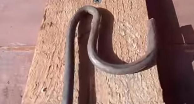 Как сделать опоры для смородины: из пластиковых труб, фото, видео